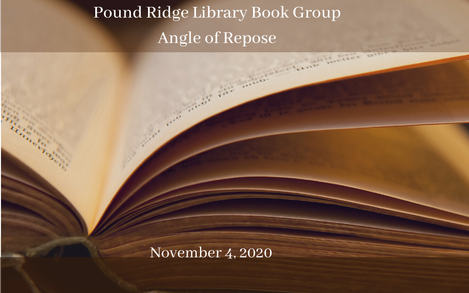 Pound Ridge Library Book Group November 4, 2020 (2)